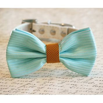 Tiffany Blue and Gold Wedding Dog bow tie, Tiffany wedding, Tiffany Dog collar