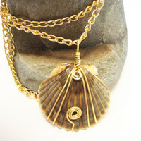 Wire Wrapped Clam Shell Necklace