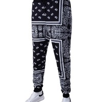 Streetstyle  Casual Paisley Tribal Printed Drawstring Slim-Leg Men's Casual Pant