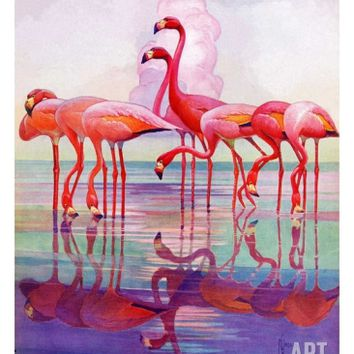 Pink Flamingos,January 29, 1938 Giclee Print by Francis Lee Jaques at Art.com