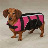 Brite Pet Life Preservers in Raspberry- Accessories - Life Jackets Posh Puppy Boutique