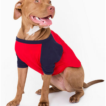 Navy & Red Poly-Cotton Dog Raglan | American Apparel