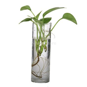 SUNTEK Cylinder Clear Glass Wall Hanging Vase Bottle for Plant Flower Decorations Free Shipping