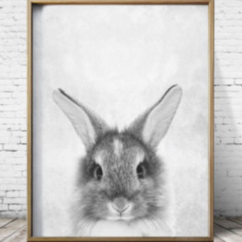 Nursery Wall Art Nursery Decor Gray Rabbit Print Bunny Printable Art Print Download Baby Girl Nursery Print Rabbit Poster