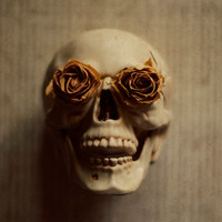 Halloween decor, skull photograph, spooky, rose, floral, black, dark, beige, cream, dried rose, fine art photo, 8x10 print, still life