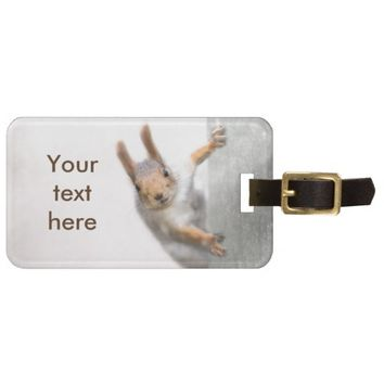 Curious squirrel luggage tag