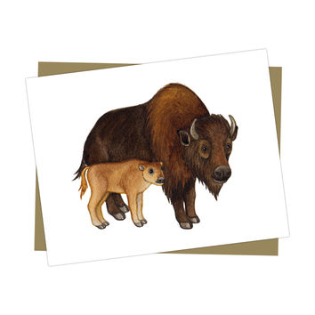 Mother and Baby Buffalo Card