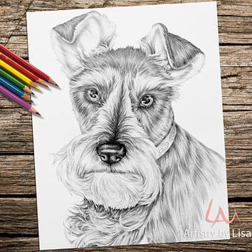 Adult Coloring Page, dog, coloring pages, Instant download coloring, schnauzer coloring, coloring book, Best selling, Printable coloring