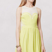 Anthropologie - Tarragona Lace Dress