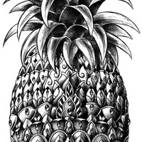 Ornate Pineapple Art Print by BIOWORKZ