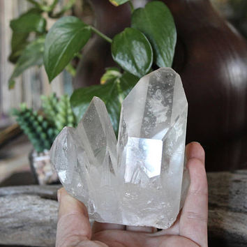 "0.8lb. Crystal Cluster Specimen, 3.8"" Raw Stone Specimen, Rough Mineral, Wiccan Altar Supply, Clear Quartz Crystal, Healing Crystal Stone"