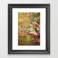 Autumn At Hickory Ridge Pond Framed Art Print by Theresa Campbell D'August Art