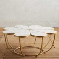 Boutonniere Coffee Table
