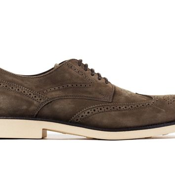 Tod's Men's Dark Brown Leather Brogue Oxford Shoes