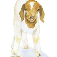 Goat Watercolor Painting - 5 x 7 - Giclee Print - Farm Animal