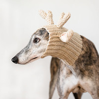 Greyhound, Incognito. Dog Photo Print, Wall Art, Greyhound Photography, Dog Photography Greyhound Gift Brindle Home Decor