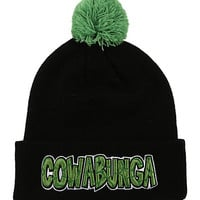 Teenage Mutant Ninja Turtles Cowabunga Pom Beanie