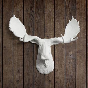The Alberta Large White Faux Taxidermy Resin Moose Head Wall Mount | White Moose w/ Colored Antlers