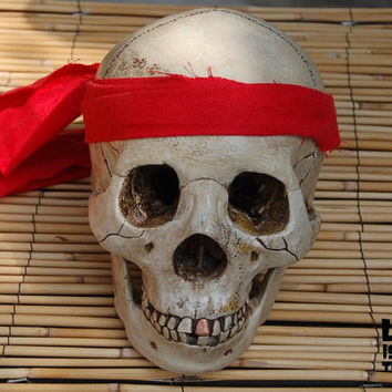 Life-Size Aged Pirate Skull