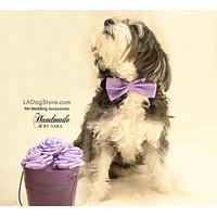 Lavender dog Bow tie attached to collar, Purple wedding accessory