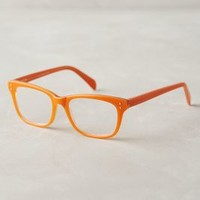 Finnigan Reading Glasses by Anthropologie Orange