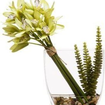 Green Orchid/Succulent Water Like
