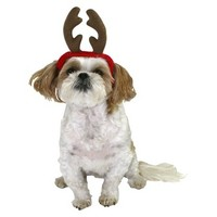 Mistletoe Pet Headband