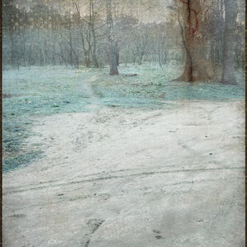 moonlight forest landscape fine art photography print, digital collage with painting, 10X12 inch blue,silver, light winter, cold, tree sepia