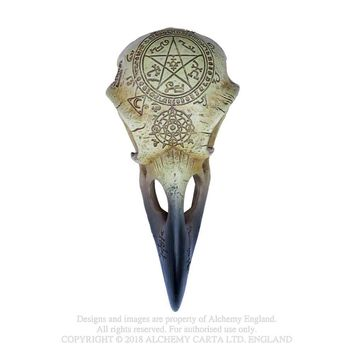 Alchemy Gothic Omega Raven Skull Figurine Figure Crow
