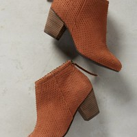 Coimbra Ankle Boots