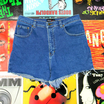 High Waisted Denim Shorts - 90s Stone Washed Stretch Jean Shorts - High Waist, Cut Off, Frayed, Rolled Up STYLE & CO Shorts Size 12 Large L
