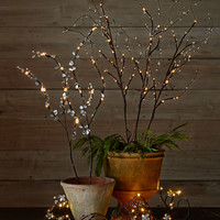 "39"" Lighted Mirrored Branches, Set of 2 - GG Collection"