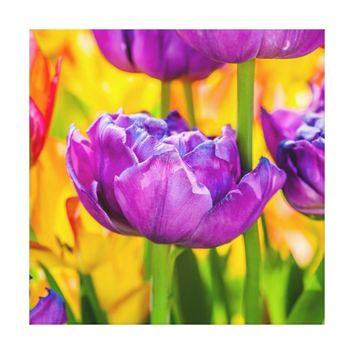 Tulips Enchanting Deep Pink Canvas Print