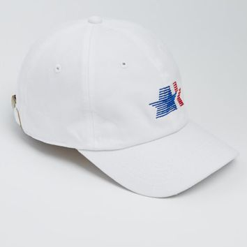 American All Star Dad Hat