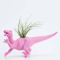 Dinosaur Planter- Air Plant Room Decor, College Dorm Ornament, Plants and Edibles, Pink Plant Pot