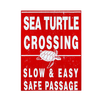 TURTLE CROSSING CANVAS