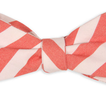 Red and White Oxford Stripe Bow Tie by High Cotton