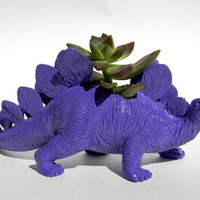 Dinosaur Theme Planter Royal Purple Great for Succulents and Cacti