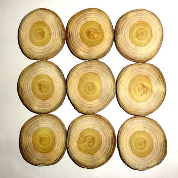 Wood slices, wood discs, wood blanks, wood centerpieces, rustic natural tree slices