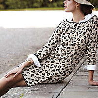 Leopardo Sweater Dress