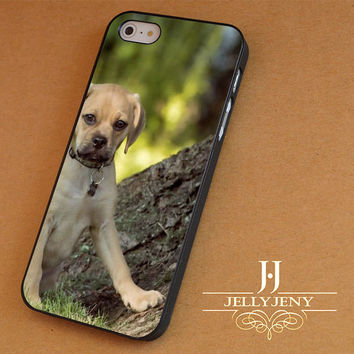 cute puppy iPhone 4 5 5c 6 Plus Case | iPod 4 5 Case