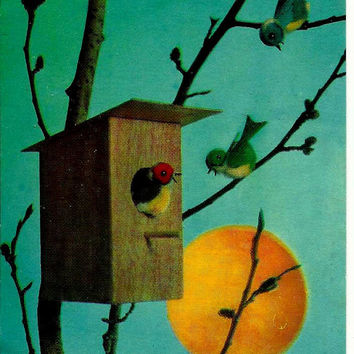 Birds, Spring, nesting box, Sun, Vintage  Russian Postcard, print 1970 unused