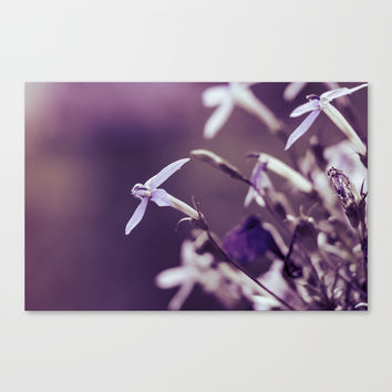 I See You Canvas Print by Faded  Photos