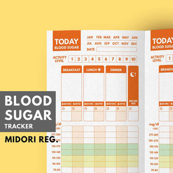 Midori Insert Blood Sugar Tracker, Type 1 Diabetes Planner, Blood Glucose Tracker, Blood Sugar Log, Printable, Diabetic Diet, Diabetes Diary