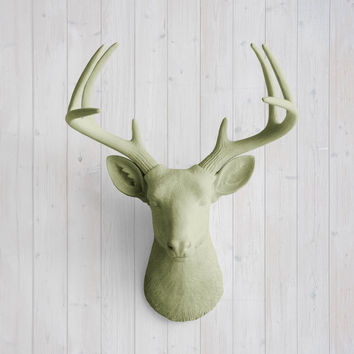 The Virginia Large Sage Green Faux Taxidermy Resin Deer Head Wall Mount | Sage Green Stag w/ Colored Antlers