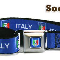 Soccer Dog Collars | High Quality Pet Collars with designs from some of today's most important Soccer Clubs