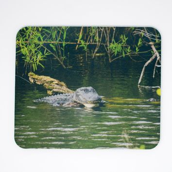 Mousepad, Alligator Florida Everglades Design, Office Décor, Photograph, Artistic