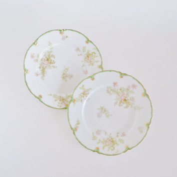 HAVILAND LIMOGES Antique Luncheon Plates Set of 2