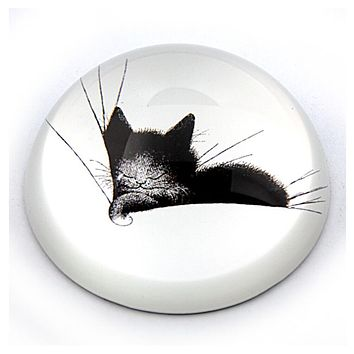 Kitty Sleeping in a Comfy Pillow Glass Dome Paperweight by Dubout 3W