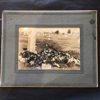 """Vintage Burial Funeral Cabinet Card 10"""" x 8"""""""
